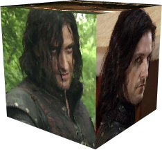 Richard Armitage as Sir Guy Field Guide